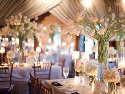 Weddings Excess Quartet